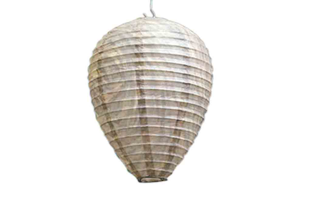 Example Of A Fake Wasp Nest